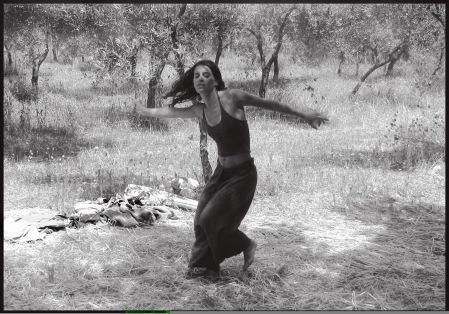 pam danza3